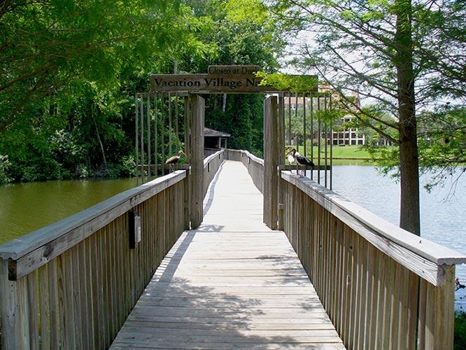 nature trail and lake, Vacation Village at Parkway